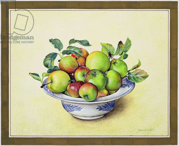 Bowl of Apples, 1990 (w/c on paper)