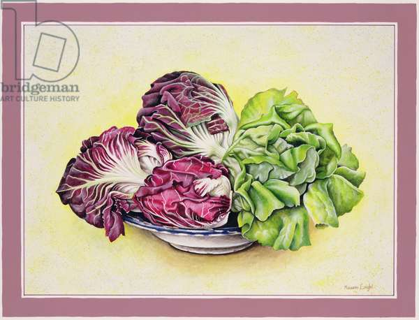 Red Radicchio, 1990 (w/c on paper)