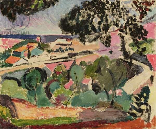 Paysage de Collioure, 1906-07 (oil on canvas)