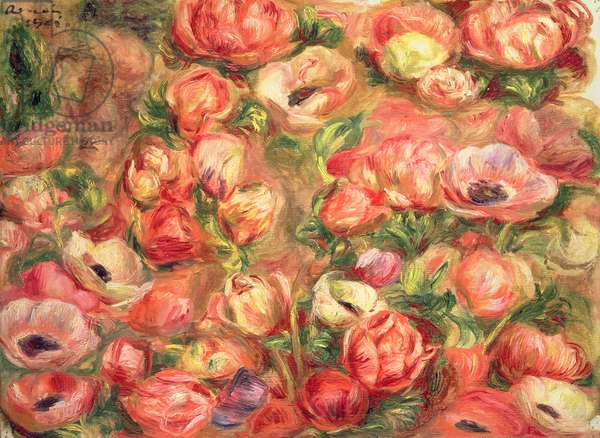 Bed of anemones, 1901