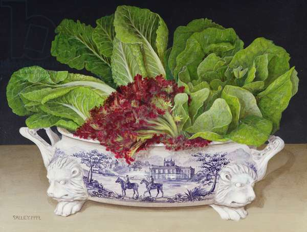 Lettuces in a Tureen, 1999 (acrylic on board)