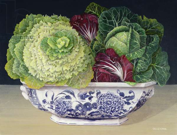 Red and Green Cabbage, 1998 (acrylic on board)
