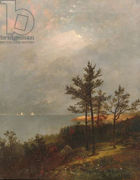 Gathering Storm on Long Island Sound, 1872 (oil on canvas)