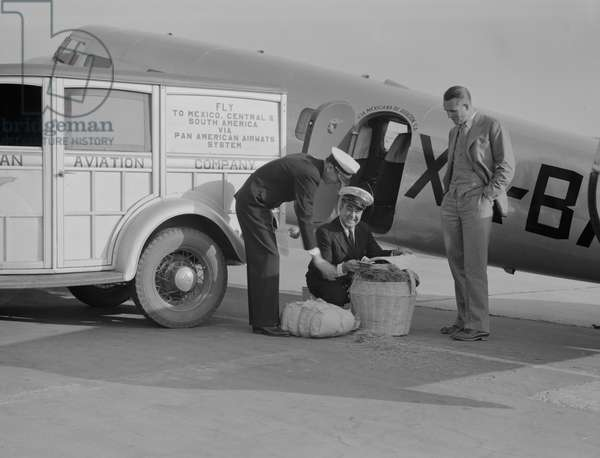 Plant quarantine inspector examining baggage brought into the United States from Mexico, 1937 (b/w photo)