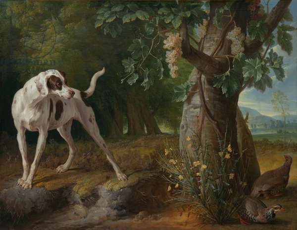 Dog Pointing Partridges in a Landscape, 1719 (oil on canvas)