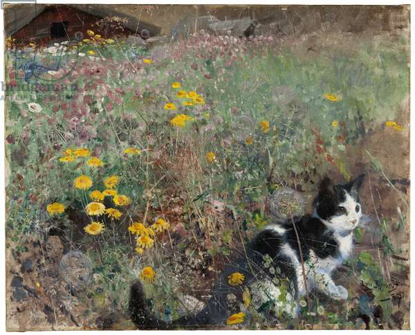 Cat on a flowery meadow, 1887 (oil on canvas)