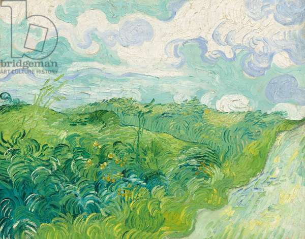 Green Wheat Fields, Auvers, 1890 (oil on canvas)