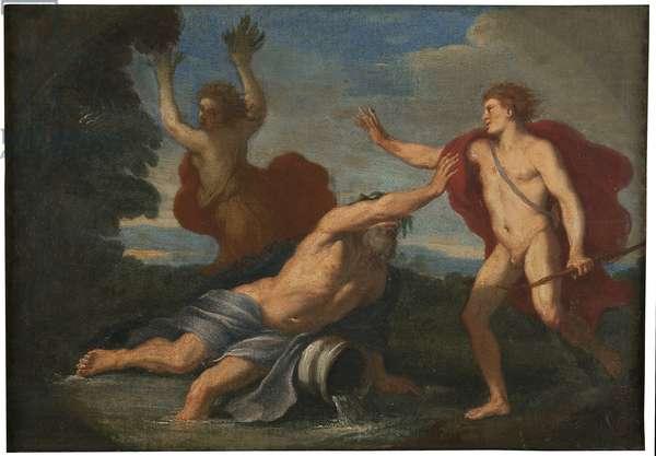 Apollo and Daphne, c.1740 (oil on canvas)