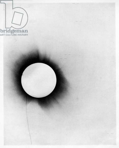 Solar eclipse, plate from 'A Determination of the Deflection of Light by the Sun's Gravitational Field, from Observations Made at the Total Eclipse of May 29, 1919' by F. W. Dyson, A. S. Eddington, and C. Davidson, 1919 (b/w photo)