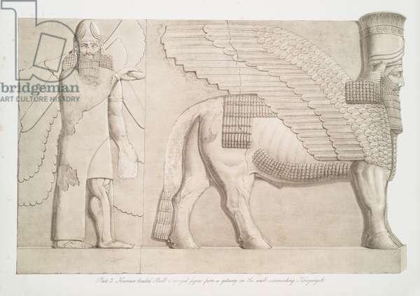 Human-headed bull and winged figure from a gateway in the wall surrounding Kouyunjik [Quyunjik], 1853 (lithograph)