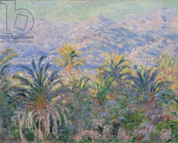Palm Trees at Bordighera, 1884 (oil on canvas)
