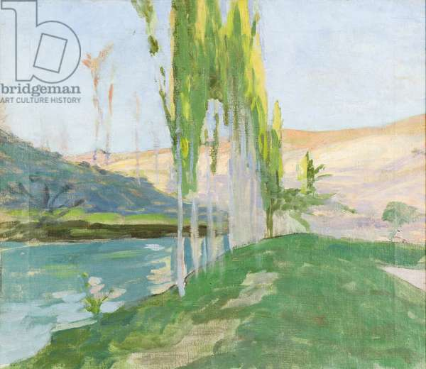Poplars Growing near a Watercourse (oil on canvas)