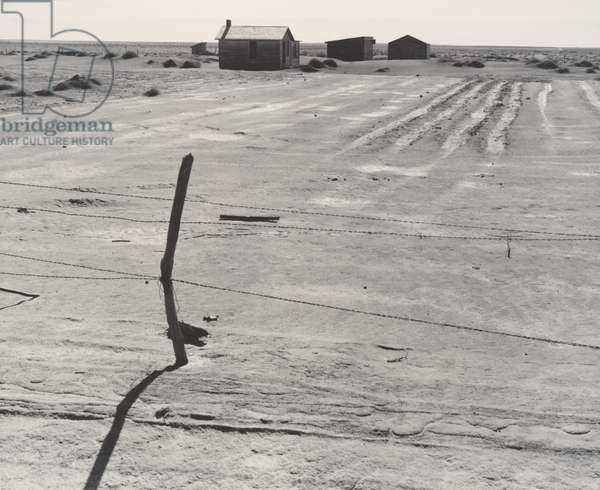 Abandoned Farm in the Dustbowl, Coldwater District, near Dalhart, Texas, 1938 (gelatin silver print)