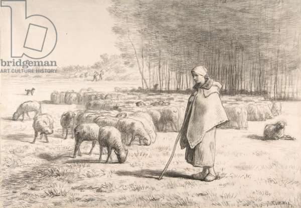 A Shepherdess with Her Flock, c.1852 (conté crayon with stumping on laid paper)
