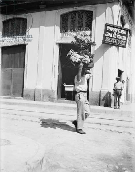 Flower vendor, Havana, c.1910 (b/w photo)