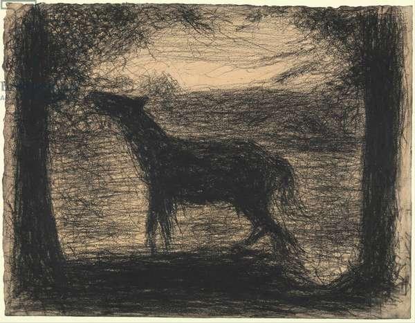 Foal (Le Poulain), 1882-83 (conte crayon on laid paper)