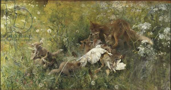 A Fox Family, 1886 (oil on canvas)