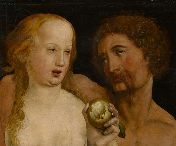 Adam and Eve, 1517 (oil on paper)