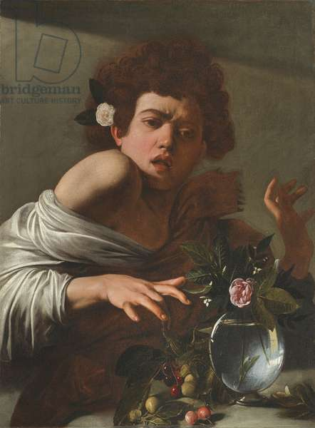 Boy Bitten by a Lizard, c.1595-1600 (oil on canvas)