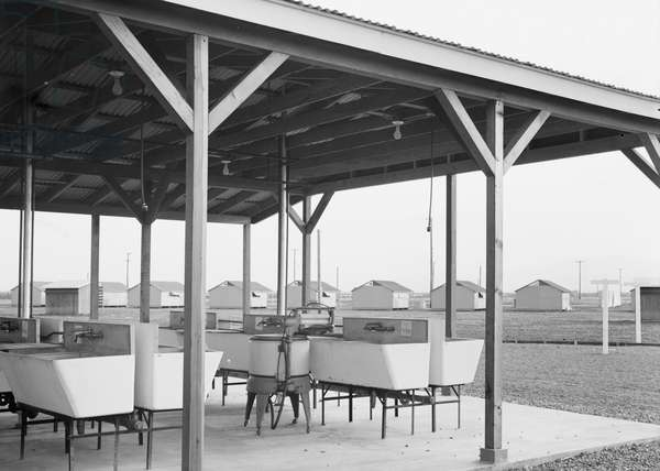 Laundry facilities at Westley camp in California, 1939 (b/w photo)