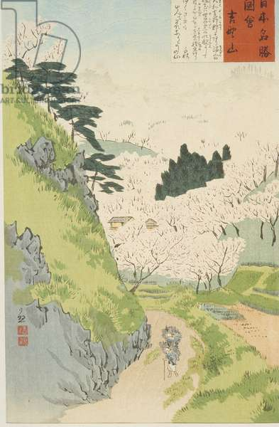 Mt. Yoshino, Cherry Blossoms or Yoshino yama from Sketches of Famous Places in Japan, 1897 (colour woodblock print)