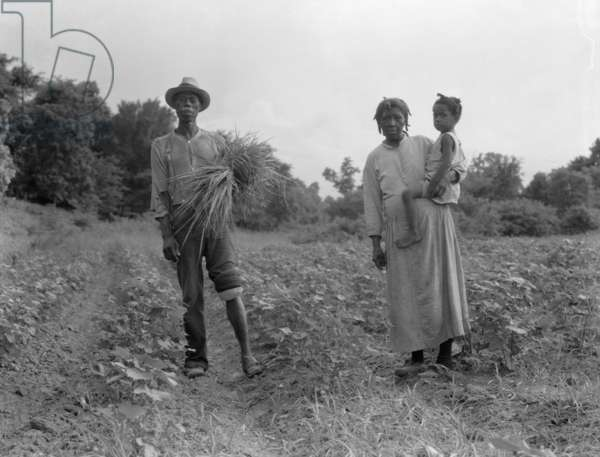 Mississippi Negro family who live on a cotton patch near Vicksburg, 1936 (b/w photo)