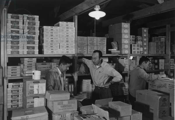 Warehouse manager M. Ogi with S. Sugimoto, manager of Co-op at Manzanar, 1943 (b/w photo)