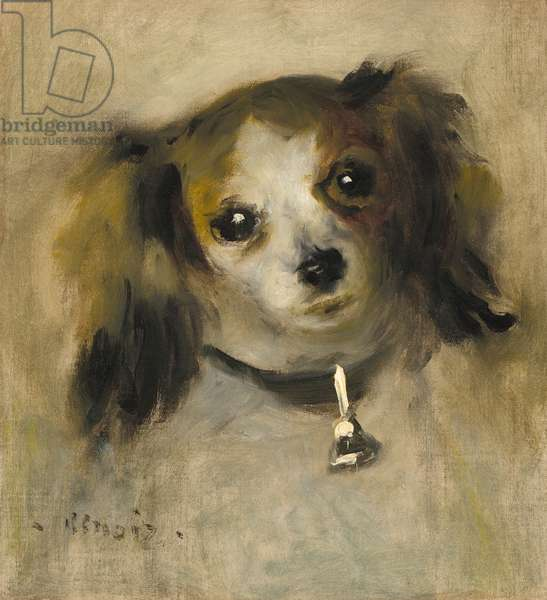 Head of a Dog, 1870 (oil on canvas)