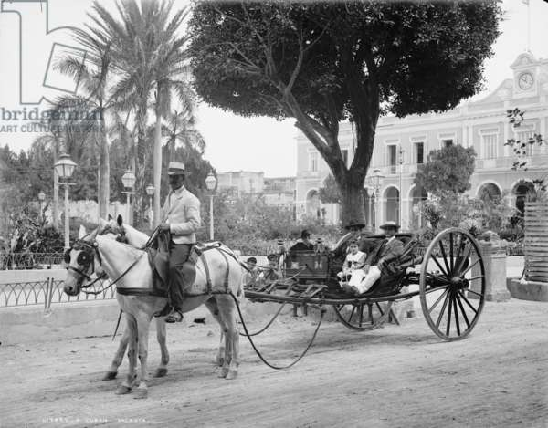 Cuban volanta, c.1904 (b/w photo)
