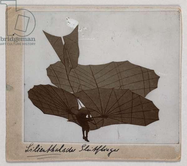 Lilienthal glider in flight, 1895-96 (b/w photo)