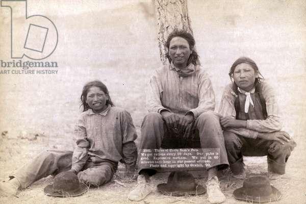 Three Lakota teenage boys in western clothing, 1891 (b/w photo)