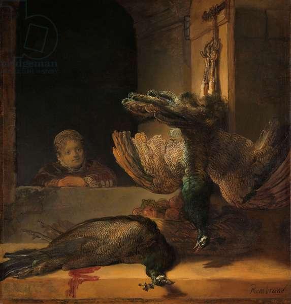 Still Life with Peacocks, c.1639 (oil on canvas)