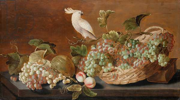 Still life with parrot, c.1640 (oil on panel)