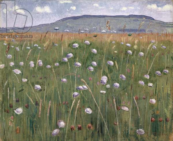 Meadow Piece, c.1901 (oil on canvas)