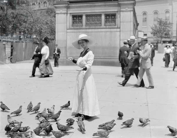 Feeding the pigeons, Boston Common