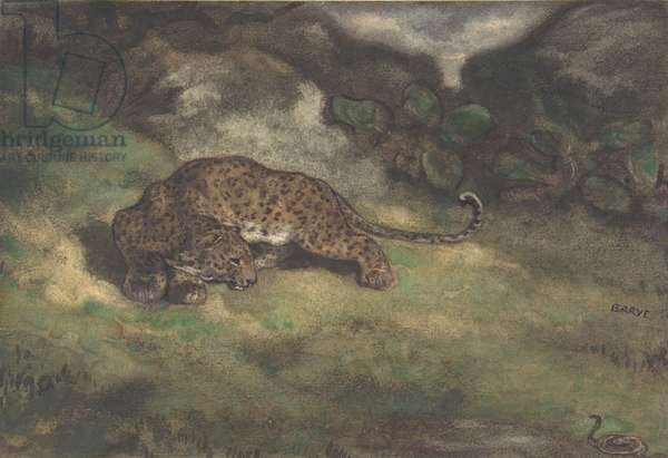 Leopard and Serpent, 1810–75 (w/c on laid paper)