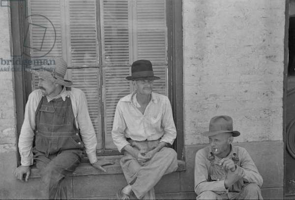Cotton sharecroppers Frank Tengle, Bud Fields, and Floyd Burroughs in Hale County, Alabama, 1936 (b/w photo)