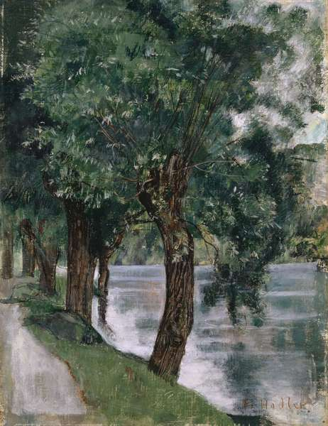 Willow Trees at the Rhone, c.1885 (oil on canvas)