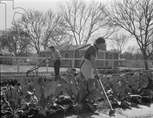 Couple growing vegetables near their New Deal homestead, El Monte, California, 1936 (b/w photo)