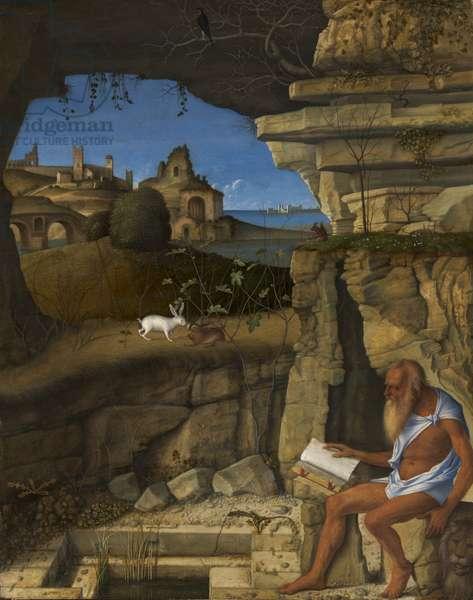 Saint Jerome Reading, 1505 (oil on panel)