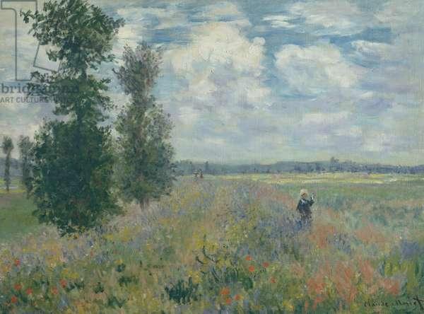 Poppy Fields near Argenteuil, 1875 (oil on canvas)