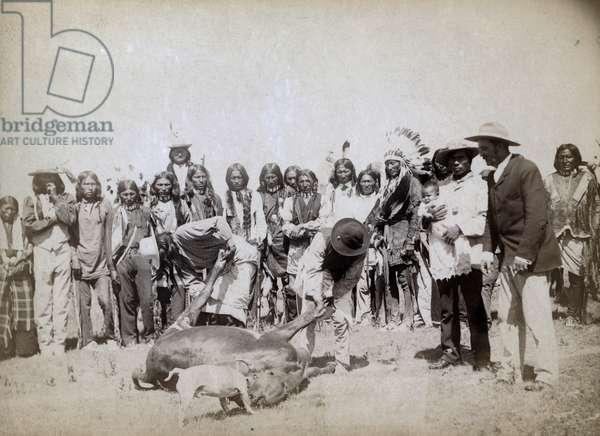 Skinning beef, 1891 (b/w photo)