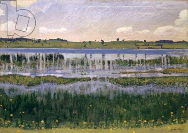 Lake Burgäschi (near Langenthal), c.1901 (oil on canvas)