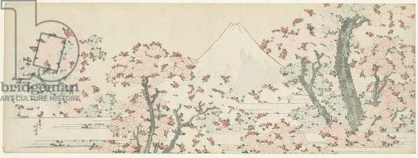 Fuji over Cherry Blossom, c.1800-1805 (woodcut)