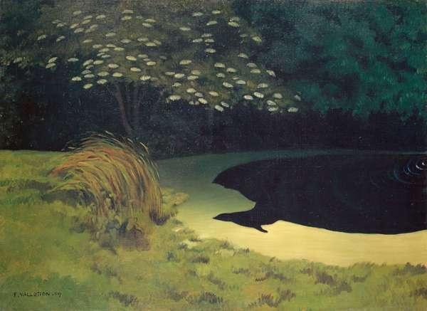 The Pond (Honfleur), 1909 (oil on canvas)