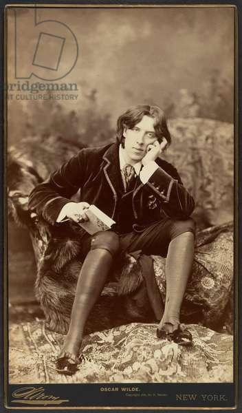Oscar Wilde, 1882 (albumen silver print)