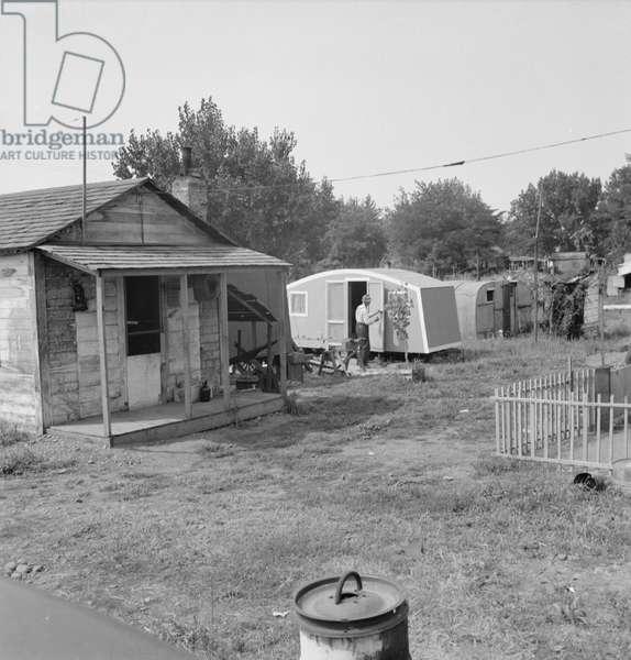 Shacktown communities around Yakima, 1939 (b/w photo)
