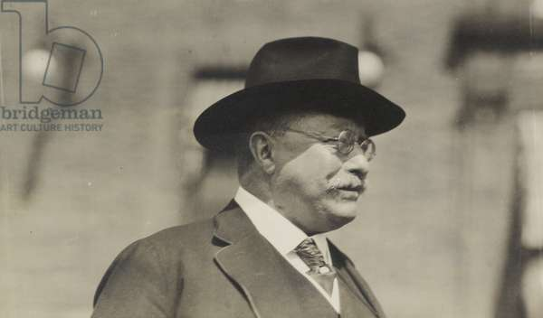 Theodore Roosevelt (b/w photo)