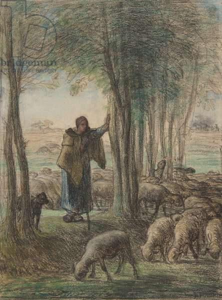 A Shepherdess and Her Flock in the Shade of Trees, 1854-55 (conté crayon and pastel on laid paper)
