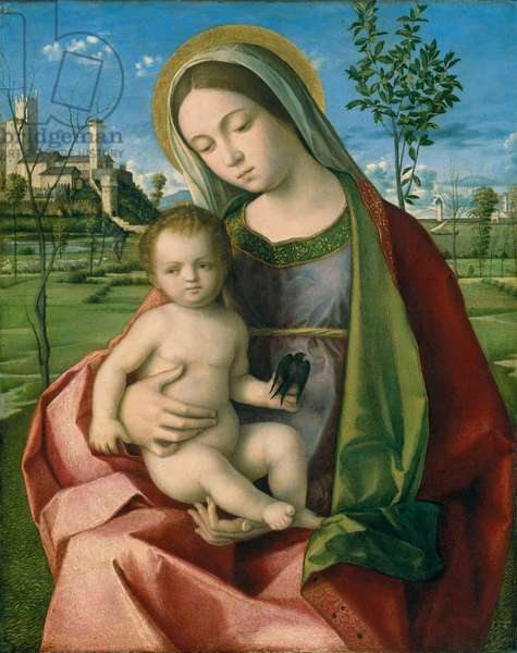 Madonna and Child, c.1510 (oil on wood)